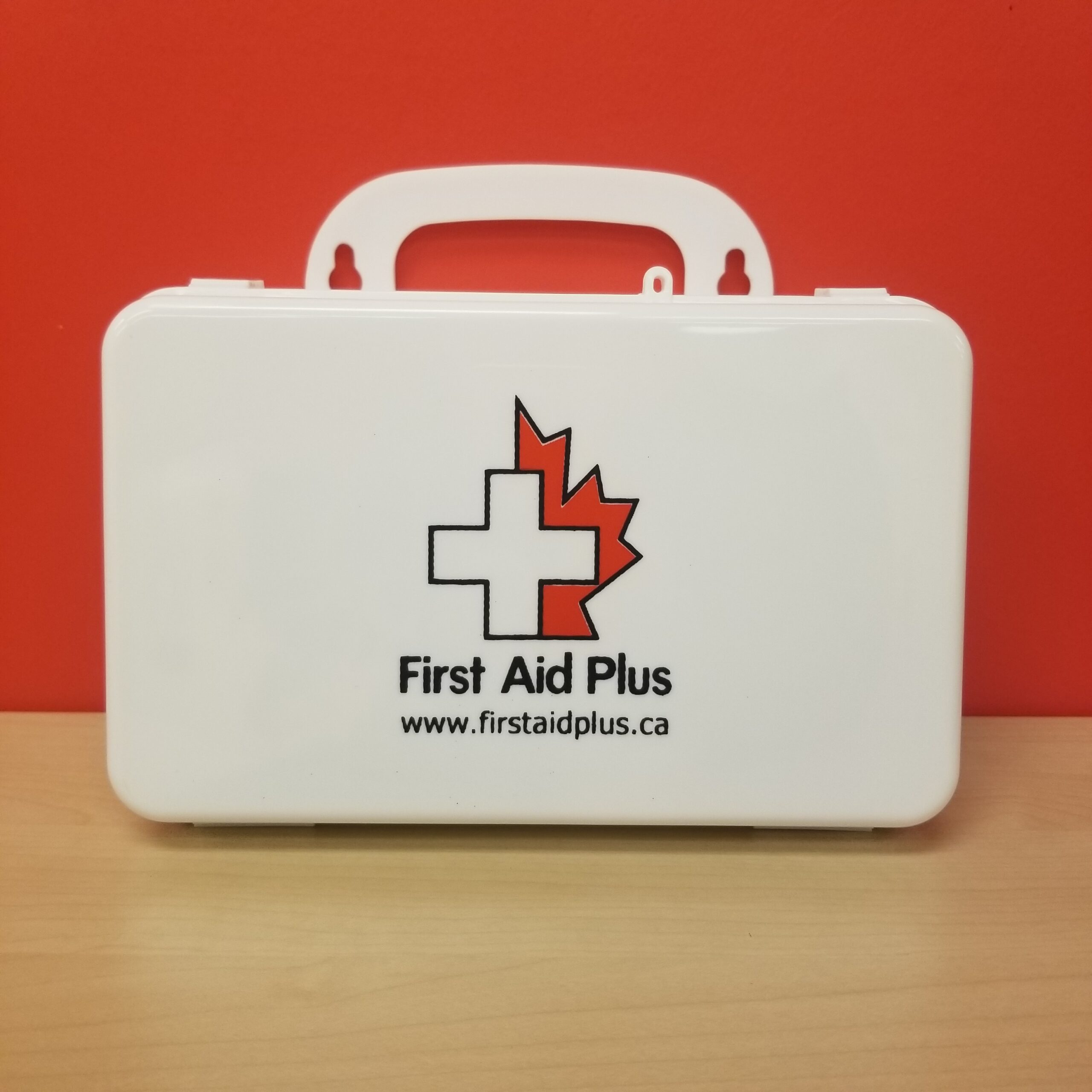 Ontario Section 8 First Aid Kit (1-5 employees)